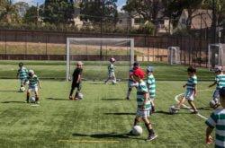 soccer lesson sydney