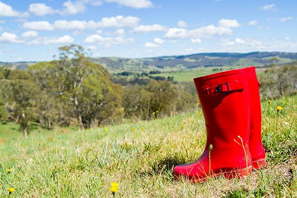 Don't forget your gumboots!