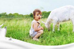 Get your FREE Sample: Oli6 Toddler Goat Milk Drink