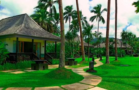 Tropical accommodation set among the palm trees...