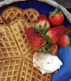 waffle-article-image