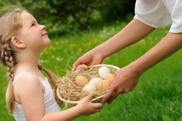 4.-nsm-eggs_morven