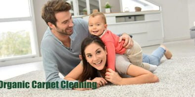 OrganicCarpetCleaning
