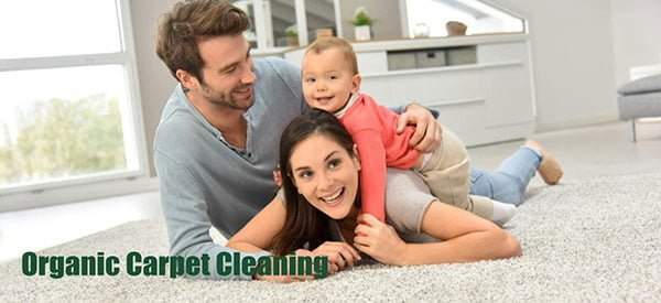 OrganicCarpetCleaning