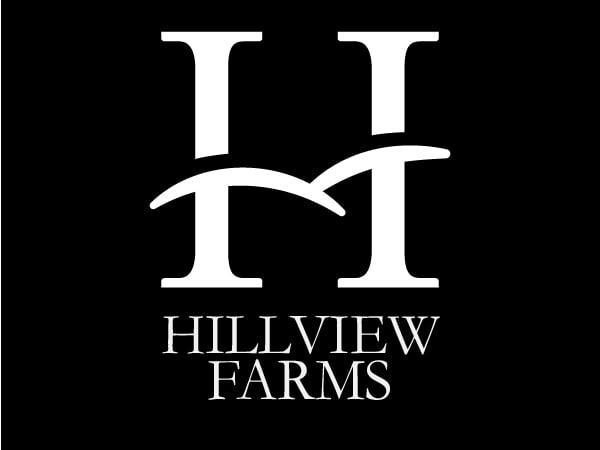 HillviewLogo-1