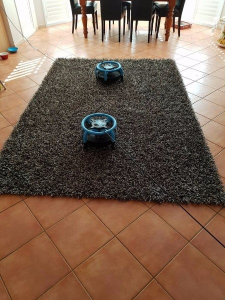 Rug-Cleaning-Northern-Beaches
