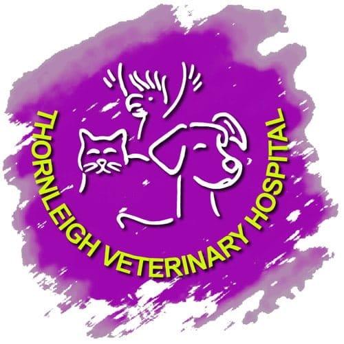 TVH-Web-Logo-LoRes
