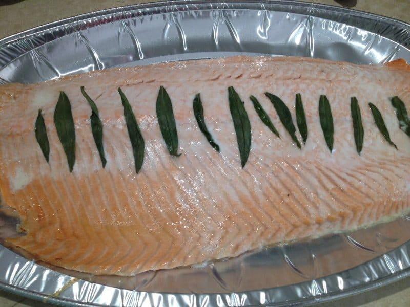 tarragn-salmon-1