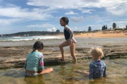 Five stunning rockpools on Sydney's Northern Beaches