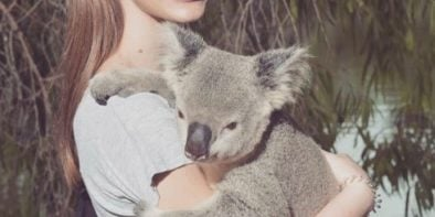 photo-Nina-Koala-for-commercial-ends