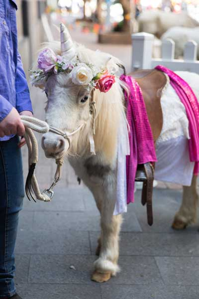A unicorn ponty at Emerge Festival