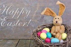 Bunnies, eggs, buns and bilbies!