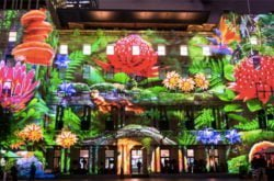 Best events for kids at Vivid Sydney 2017