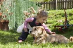 Tick bites: Protecting kids and pets