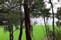 Berry Island: A bushland park by the beach