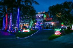 Shine bright! Christmas Lights for Charity in Davidson