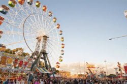 Do the Show like a pro! Easter Show tips from an insider