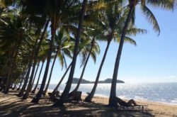 A family vay-cay to Palm Cove, Far North Queensland