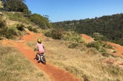 A riding adventure at Jubes Mountain Bike Park in Wahroonga