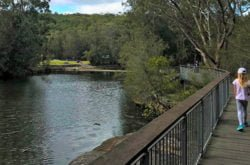 Lane Cove National Park: Stunning and something for everyone!