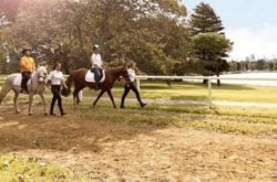 Where to take the kids horse riding in Sydney. Giddy-up!