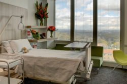Review: The New SAN Maternity Ward