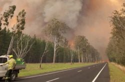 Devastating NSW bushfires in Rappville destroys homes