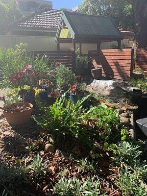 Garden1582067703