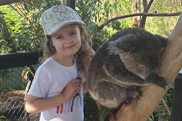 Cassie-koala