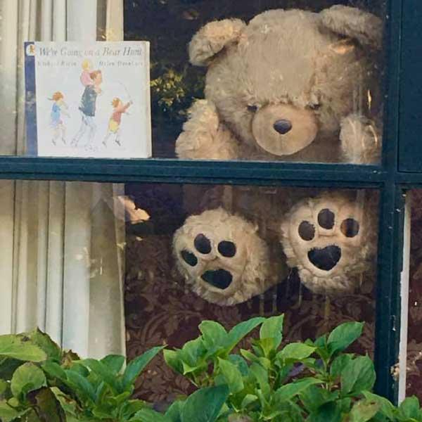 Bear Hunt Sydney