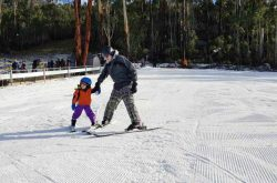 Corin Forest: Family Snowplay Fun