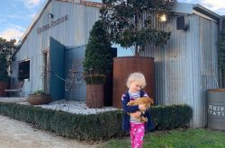 Travel Guide: Best things to do around Orange with kids!