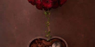 NewbornHeartandflowerscapturedbyAndreaDedikPhotography1593826081