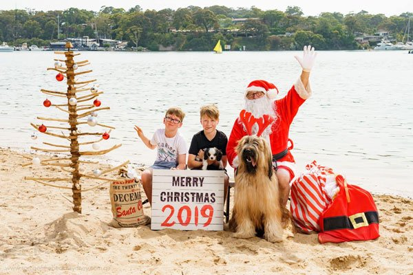 Santa on the beach photo