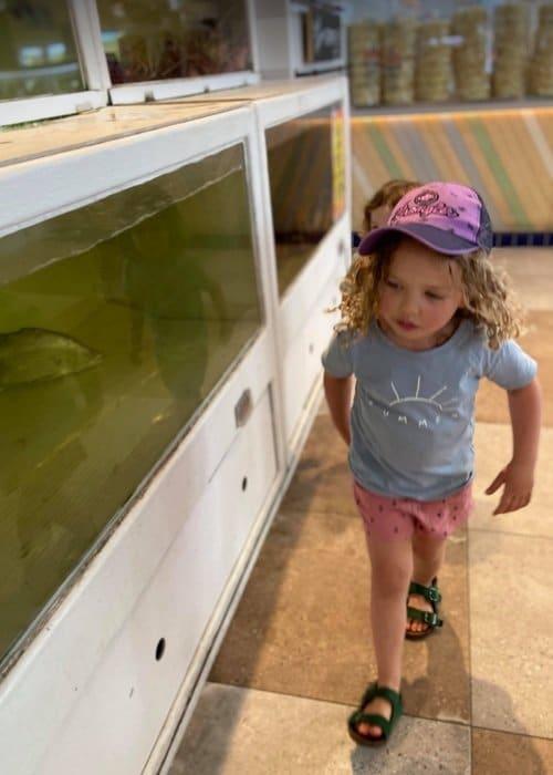 Fish in tank at markets