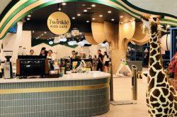 Twinkle Kids Cafe St Leonards: Council deciding on $550,000 cafe