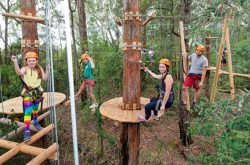 treetops high ropes course
