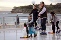 Ice Skating Rinks in Sydney