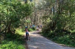 Bike Ride Narrabeen Lake