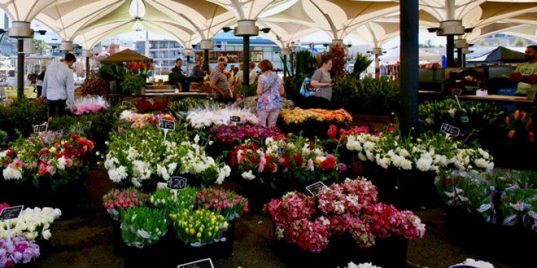 Fresh produce markets stalls