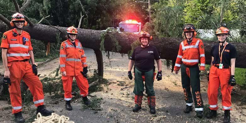 SES volunteers clear a fallen tree