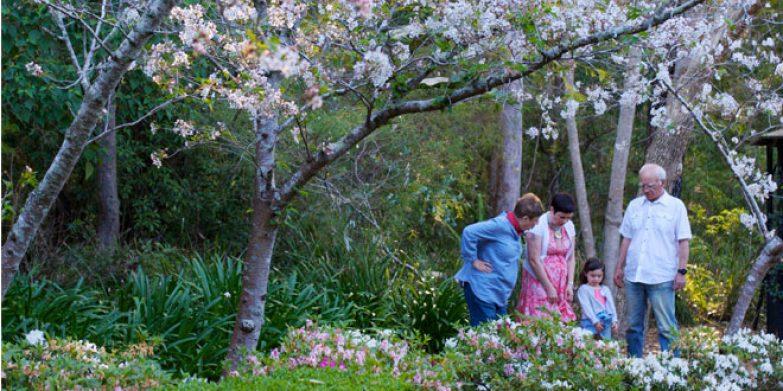 Swain Gardens. Image courtesy: Derek Stalley Photography