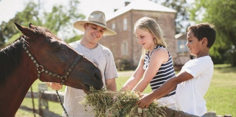 rouse hill farm_feature